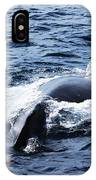 Whales Family IPhone X Case