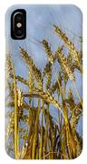 Wheat Standing Tall IPhone Case