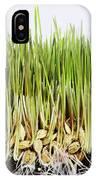 Wheatgrass Seedling IPhone Case