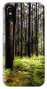 When The Forest Beckons IPhone Case