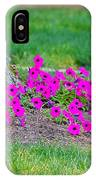 Where Petunia Grows IPhone Case