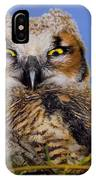 Where'd Ya Get Those Peepers IPhone Case