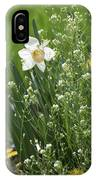 White And Yellow Daffodil IPhone Case