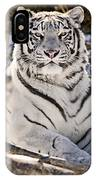 White Bengal Tiger, Forestry Farm IPhone Case