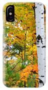White Birch Autumn IPhone Case