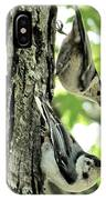 White Breasted Nuthatches IPhone Case