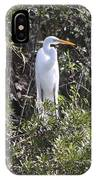 White Egret In The Swamp IPhone Case