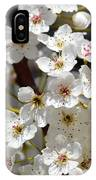 White Flowering Tree Flowers IPhone Case