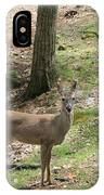 White Tail Deer IPhone Case