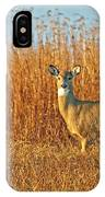 White Tailed Deer In Morning Light IPhone Case