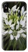White Tenderness IPhone Case