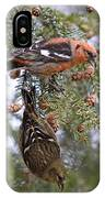 White-winged Crossbills IPhone Case
