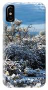 White Winter In The Desert Of Tucson Arizona IPhone Case
