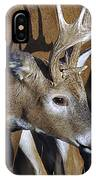 White-tailed Deer Antler Shadow IPhone Case