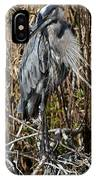 Who Is There - Great Blue Heron IPhone Case