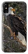 Who Ruffled The Feathers IPhone Case