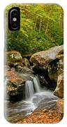 Wild And Wonderful IPhone Case