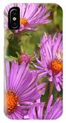 Wild Asters IPhone Case