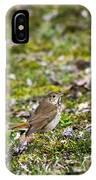 Wild Birds Hermit Thrush IPhone Case