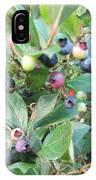 Wild Blueberry Bush IPhone Case