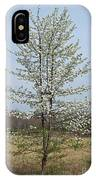 Wild Cherry Tree In Spring Bloom IPhone Case