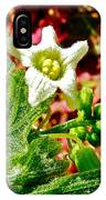 Wild Cucumber In Park Sierra Near Coarsegold-california  IPhone Case
