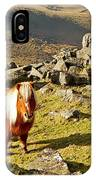 Wild Dartmoor Pony IPhone Case