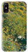 Wild Flowers, Anza Borrego Desert State IPhone Case