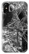 Wild Hawaiian Parrot Black And White IPhone Case