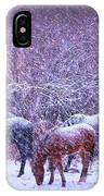 Wild Horse Christams IPhone X Case
