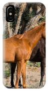 Wild Horses Of Joshua Tree IPhone Case