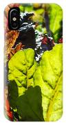 Wild Lettuce IPhone Case
