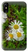 Wild Miniature Daisies IPhone Case