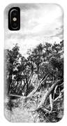 Wild Misses Me IPhone Case