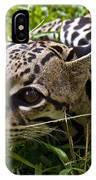Wild Ocelot IPhone Case