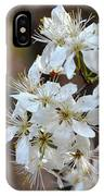 Wild Plum Blooms IPhone Case