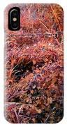 Wild Sunburst  IPhone Case