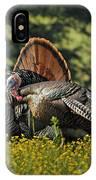 Wild Turkey 2 IPhone Case