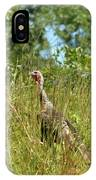 Wild Turkey In The Sun IPhone Case