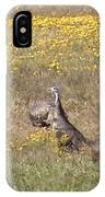 Wild Turkeys Grazing IPhone Case