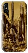 Wild West Ivb IPhone Case