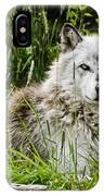 Wild Wolf IPhone Case