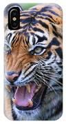 Wildcat IIi IPhone Case