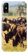 Wildebeests Herd. Gnu On African Savanna IPhone Case