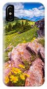 Wildflowers And Pink Rocks IPhone Case