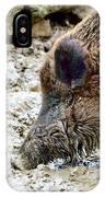 Wildschwein IPhone Case