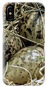 Willet Catoptrophorus Semipalmatus Eggs IPhone Case