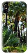 Willis Palm Oasis IPhone Case
