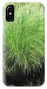 Willow Water IPhone Case