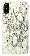 Willows By The Lake IPhone Case